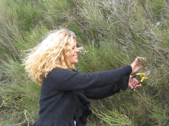 2008 Les petites mains