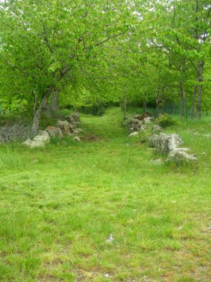 2007 Acces au village